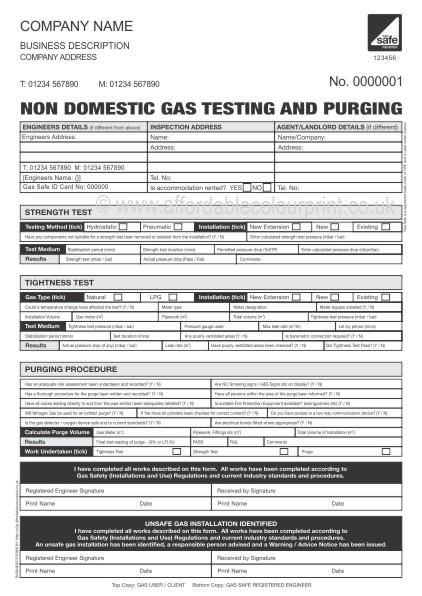 NON DOMESTIC GAS TESTING AND PURGING REPORT